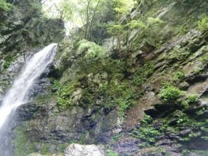 犬取の滝を見上げる