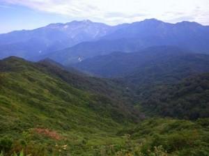 登ってきた中の俣谷川と白山連峰