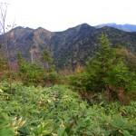 2,080m峰への登りで佐武流山、苗場山を振り返る