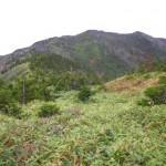 三県国境への最後の登り