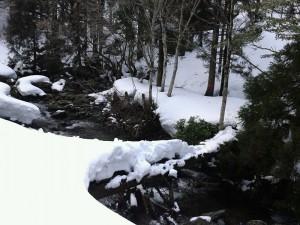 大きく雪が載っており、渡るの困難